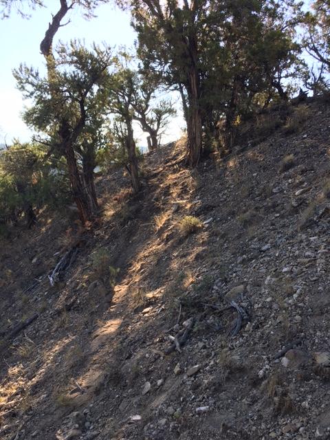Tips for building switchbacks on steep sidehills-pbsidehill.jpg