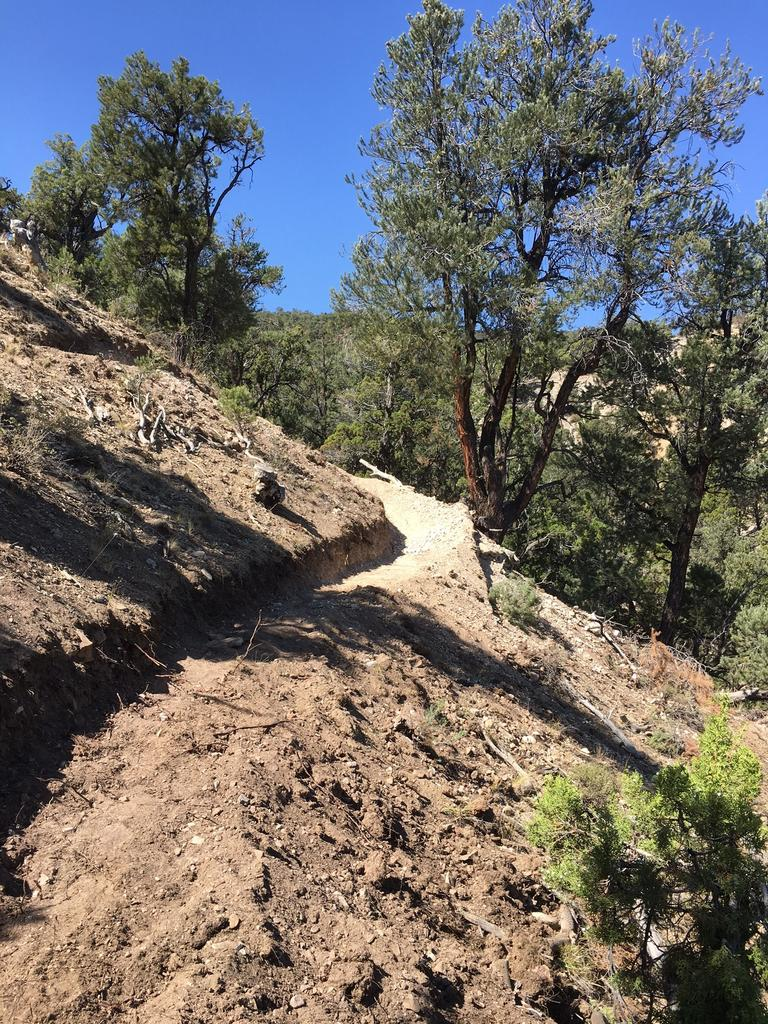 Tips for building switchbacks on steep sidehills-pbswitchback.jpg