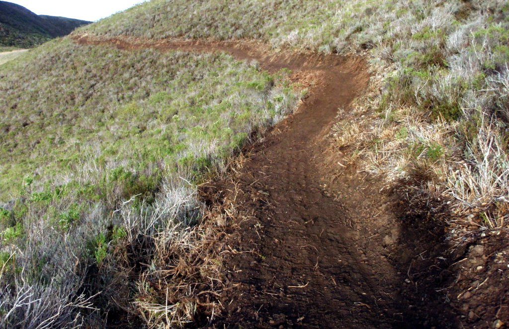 Help needed, building trails first bike access in over 25 years-pc052170.jpg