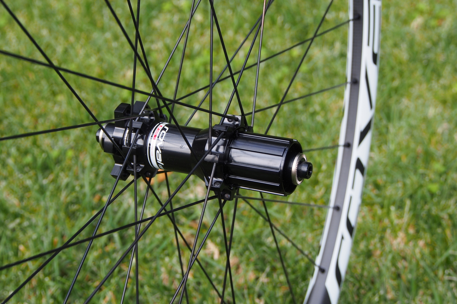 Specialized Control 29 Carbon Wheels rear hub