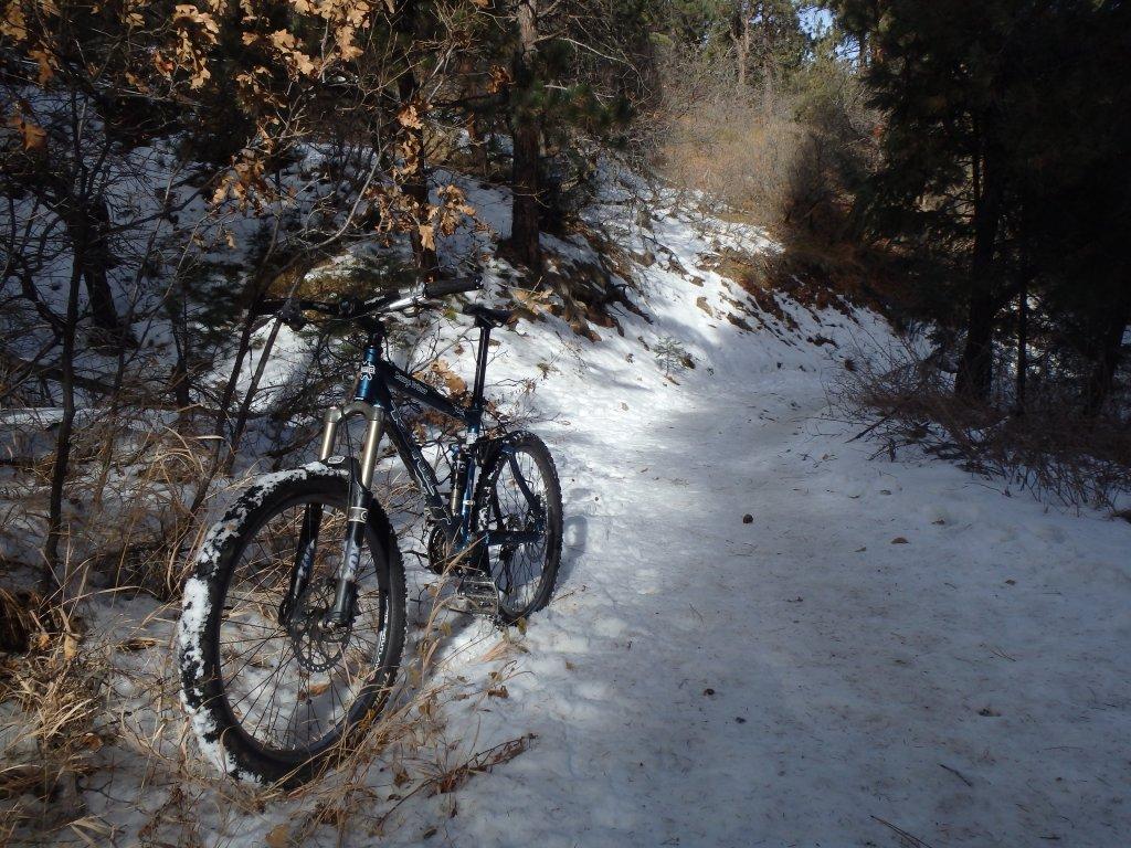 First Snow Rides-pc28129211.jpg