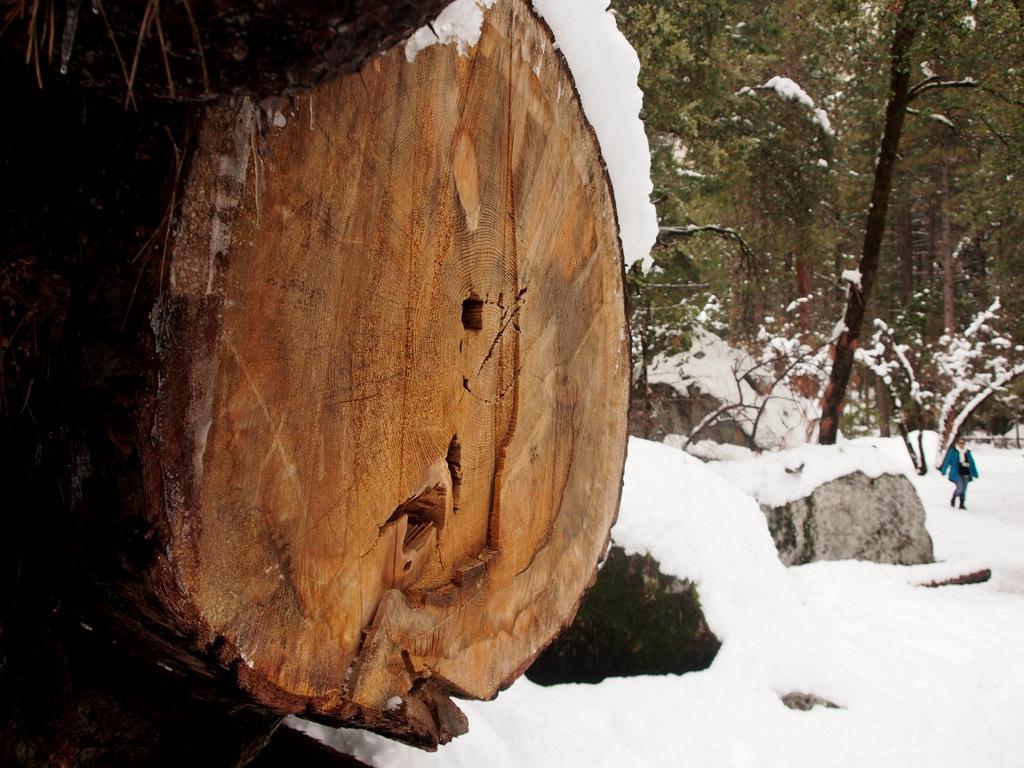 Yosemite in the winter-pc290051.jpg