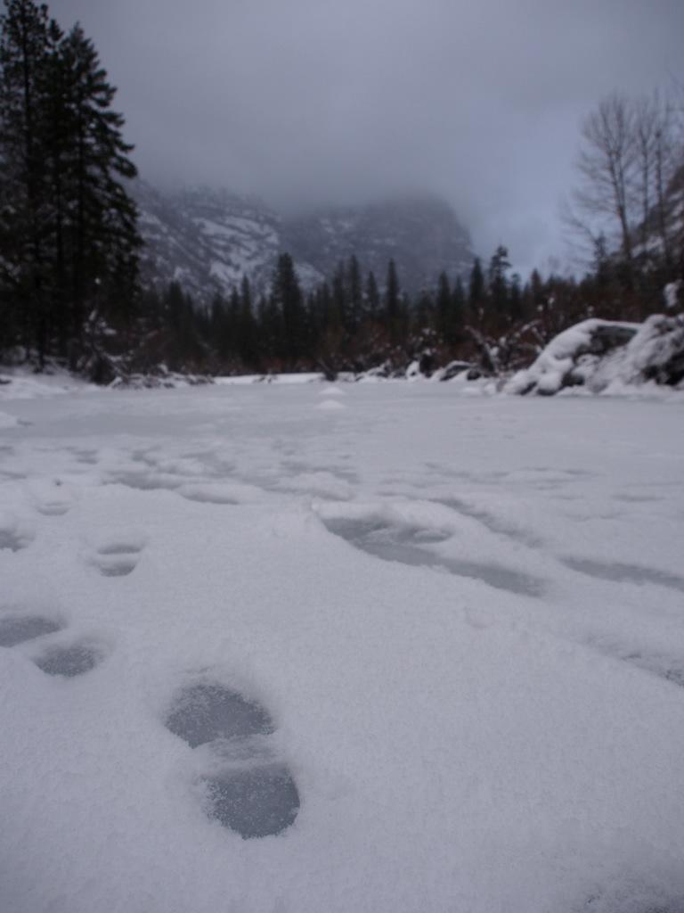 Yosemite in the winter-pc290082.jpg