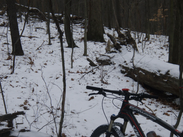 Snow Ride! Got to try out the Deflect Bibs-pc300911.jpg