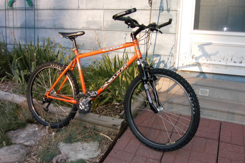 2nd bike/loaner Wahoo-pdrm1584.jpg