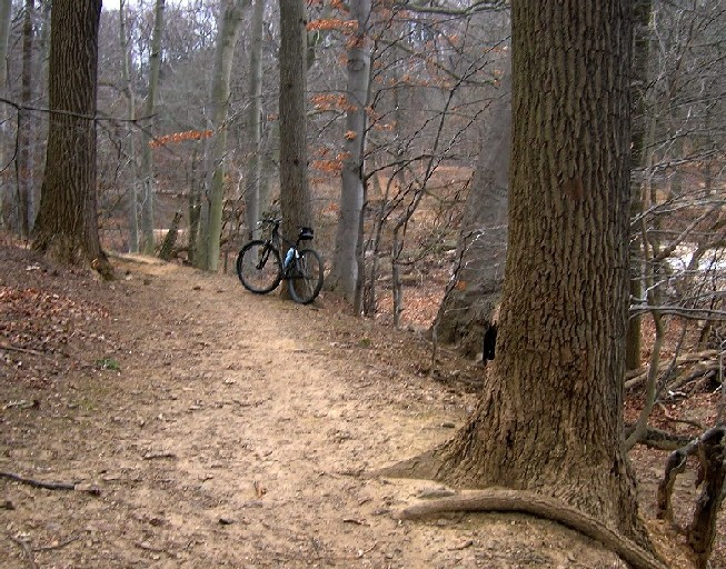 Pennypack -- Calm before the storm-penny01.jpg