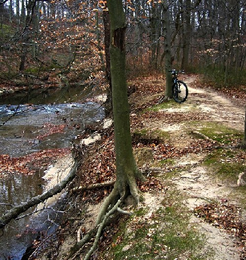 Pennypack -- Calm before the storm-penny04.jpg