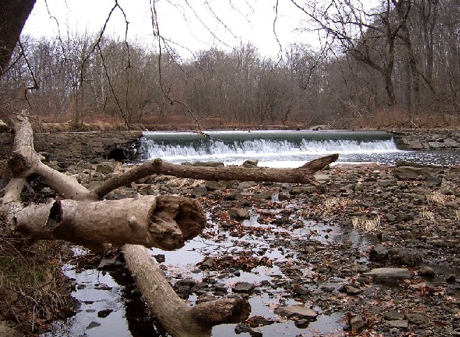 Pennypack -- Calm before the storm-penny08.jpg