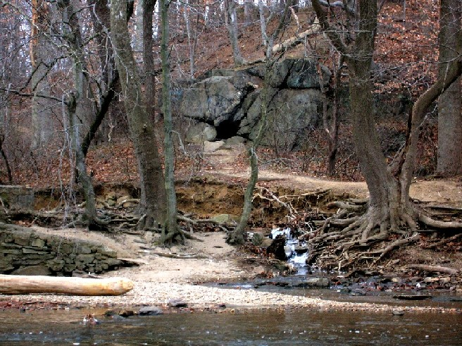Pennypack -- Calm before the storm-penny11.jpg