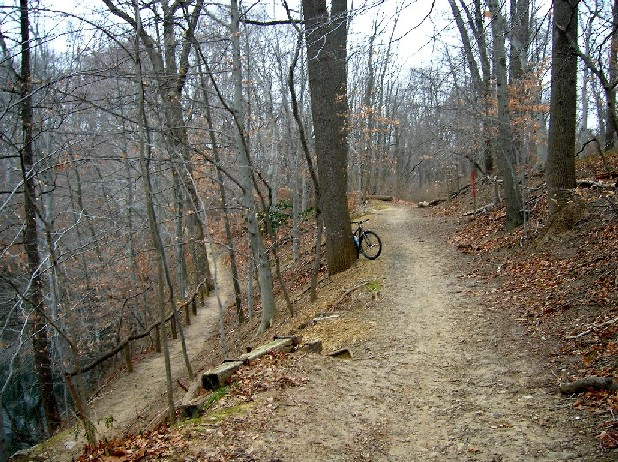 Pennypack -- Calm before the storm-penny14.jpg