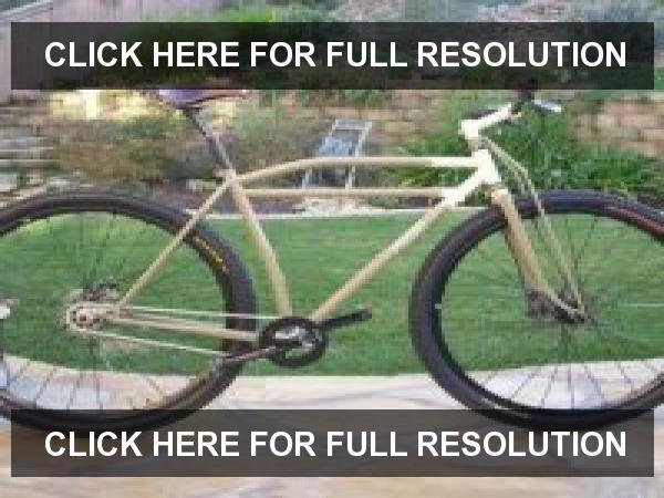 Retro Build: 2017 Pearl Pass Bike-pereira-cycles-roaring-29er.jpg