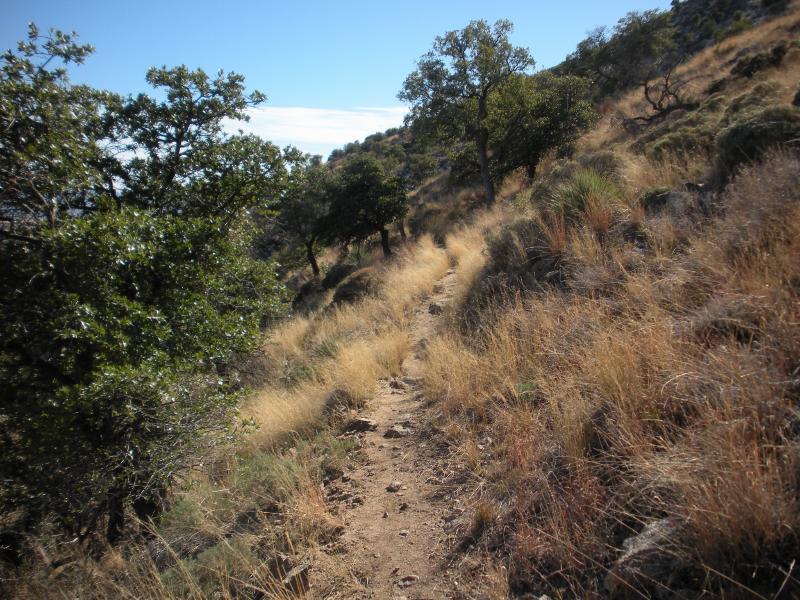 Sierra Vista-perimeter-trail.jpg.jpg
