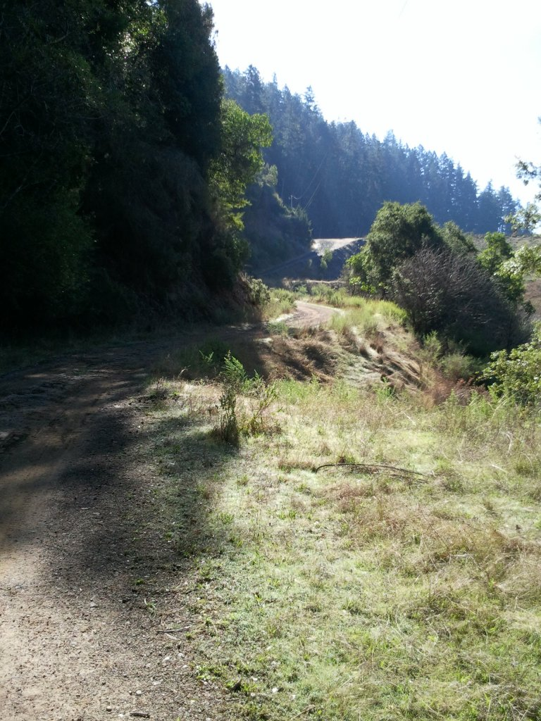 Summer riding in Marin-peters-dam-road-1.55.jpg