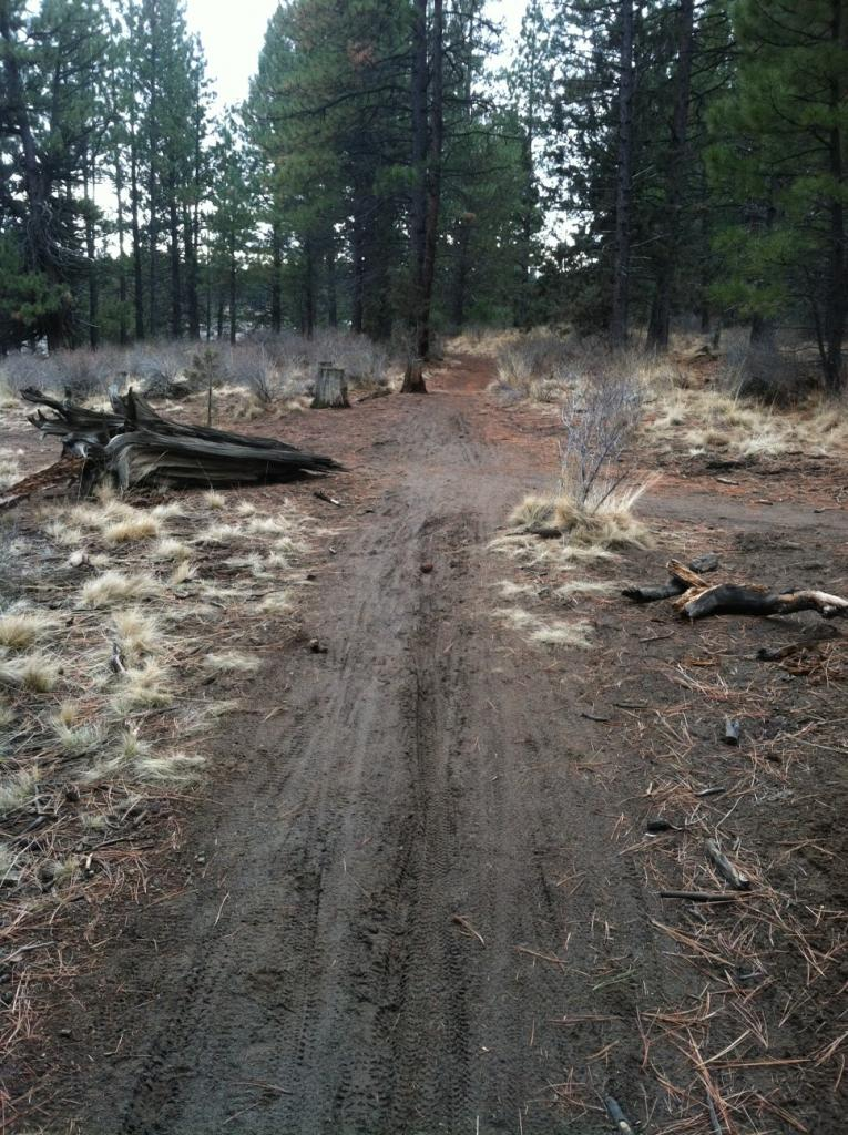 Current Bend trail conditions-phils-mud.jpg