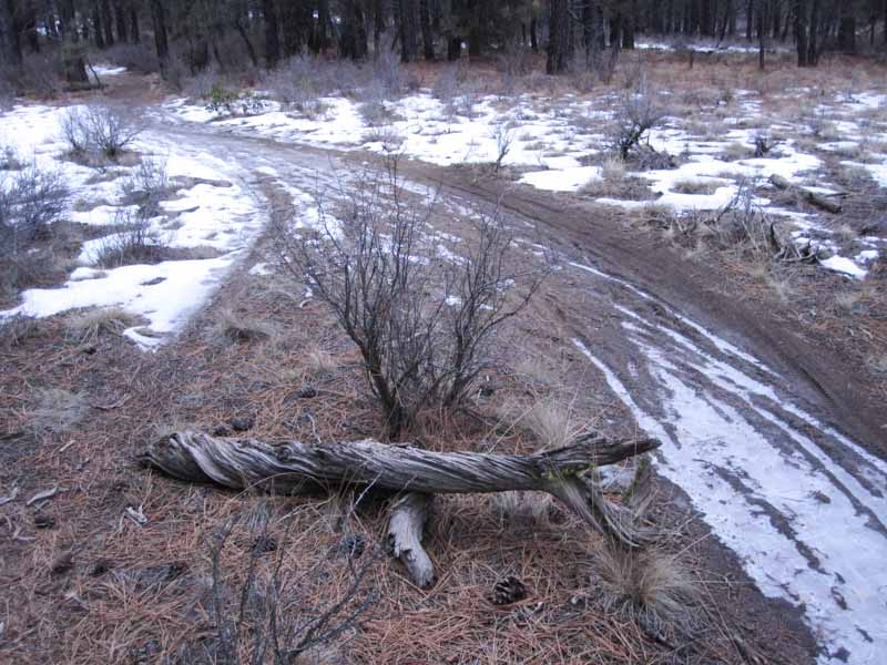Phil's Trail Complex Soils 101 - Why riding when wet and muddy causes trail damage.-phils1-4.jpg