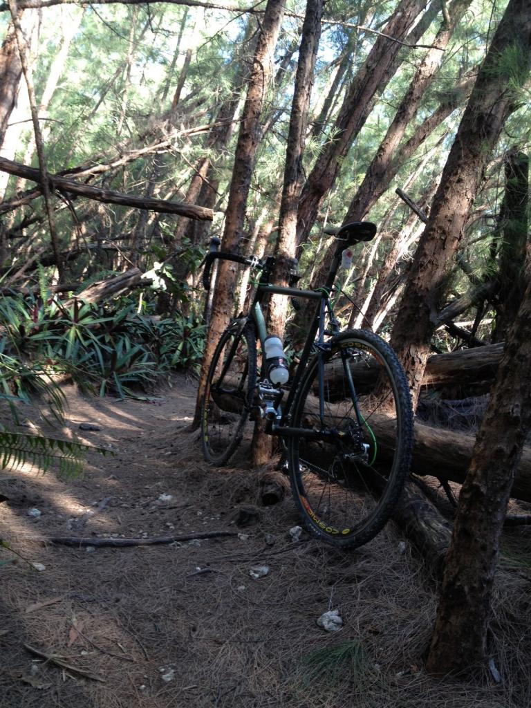 Cross Bikes on Singletrack - Post Your Photos-photo-1-.jpg