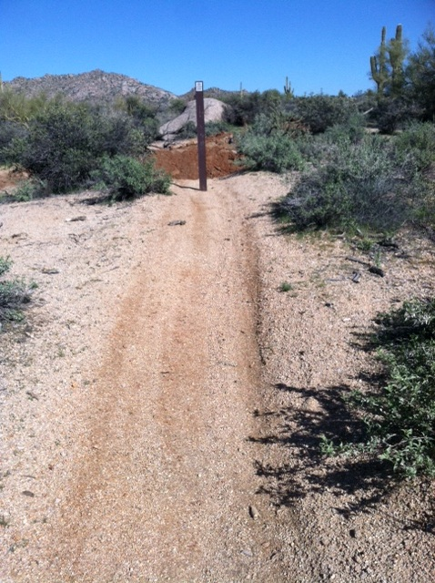 New Trails out at Pima and Dynamite-photo-1.jpg