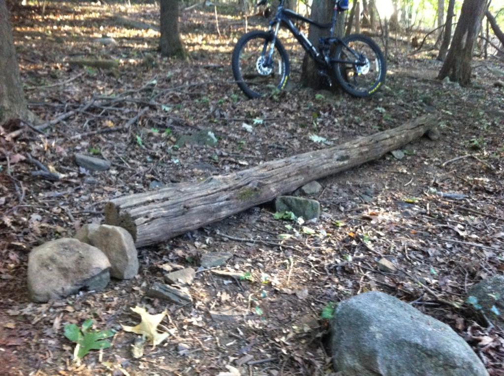 Backyard Trails-photo-2.jpg