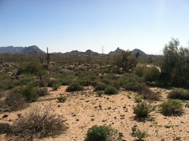 New Trails out at Pima and Dynamite-photo-2.jpg