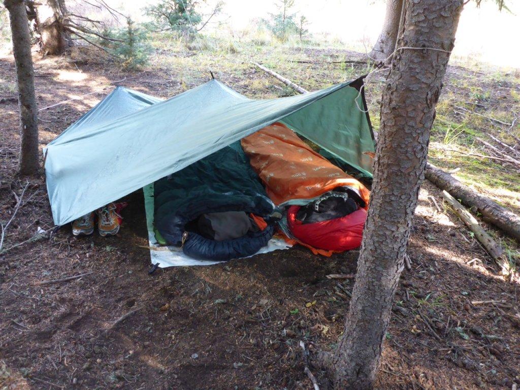 Shelters-photo-2.jpg