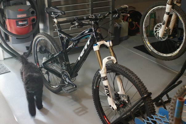 All Our Bikes-photo-3.jpeg