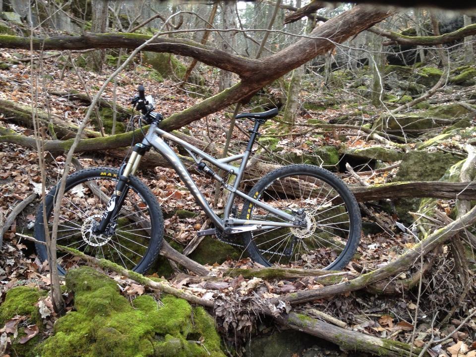 Who is riding a Satori?-photo-3.jpg