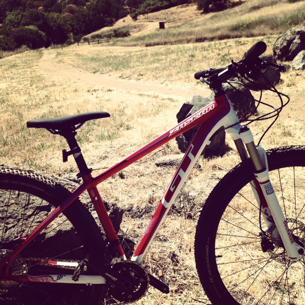 What did You do today on your mountain bike?-photo-3-.jpg