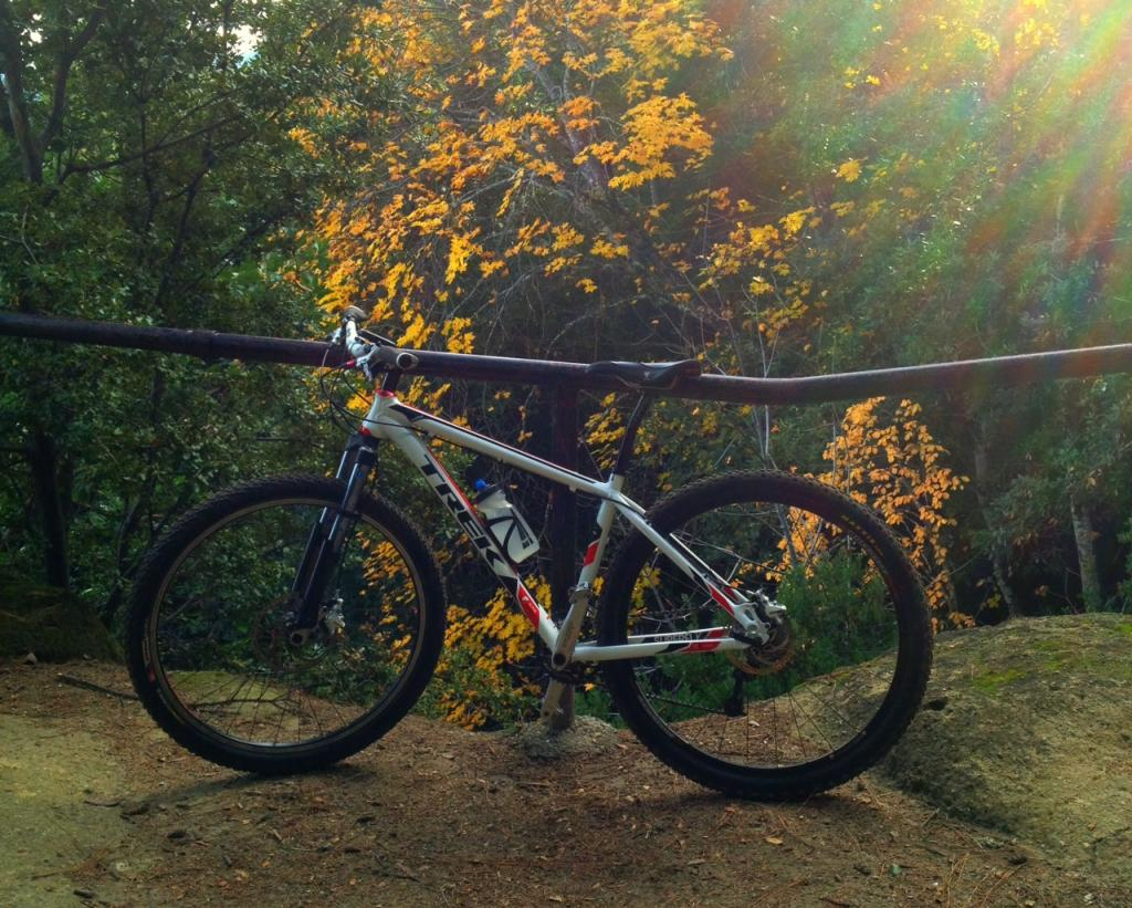 Trek 29er's roll call-photo-4-.jpg