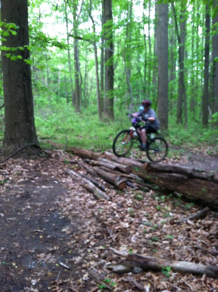 Kid's Mountain or Road Bike Ride Picture Thread-photo-4-.jpg