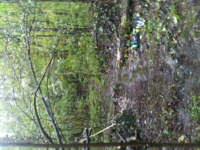 Moon Lake Trail damage reports here-photo-4445.jpg