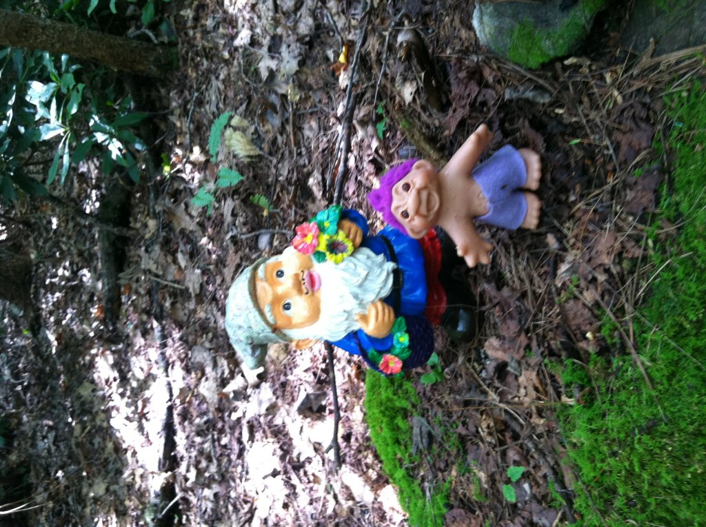 Adventures with the Pisgah Gnome-photo-6.jpg