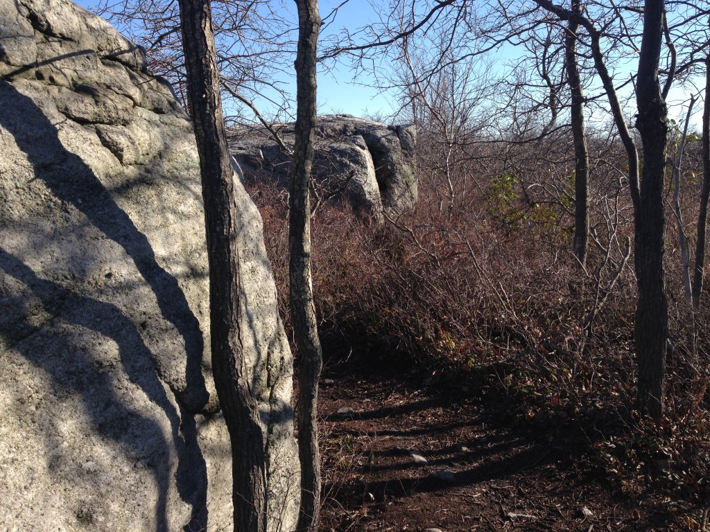 "New trail at Moosic Mountain: ""After Five""-photo-apr-24-5-22-17-pm.jpg"