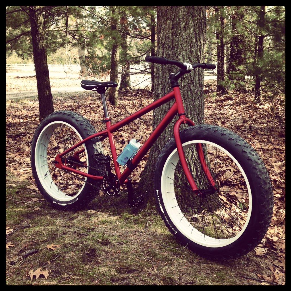 Less 'Beast'ly Fat Bike-photo.jpg
