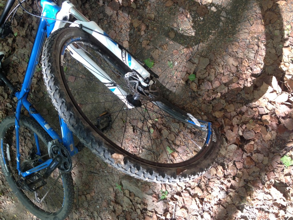 User error... or too much for my 13' Trek Marlin 29er-photo.jpg