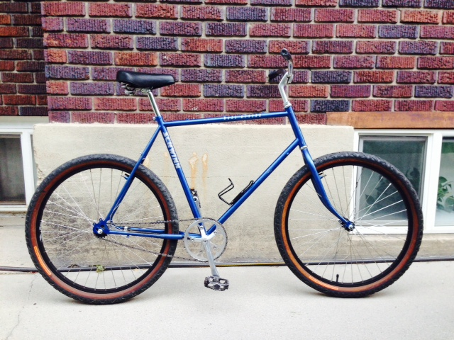 Recommendations for vintage MTB's for single-speed conversion-photo.jpg