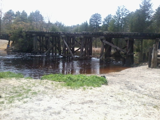 Barnegat Branch Rail trail Berkeley Twp-photo0168.jpg