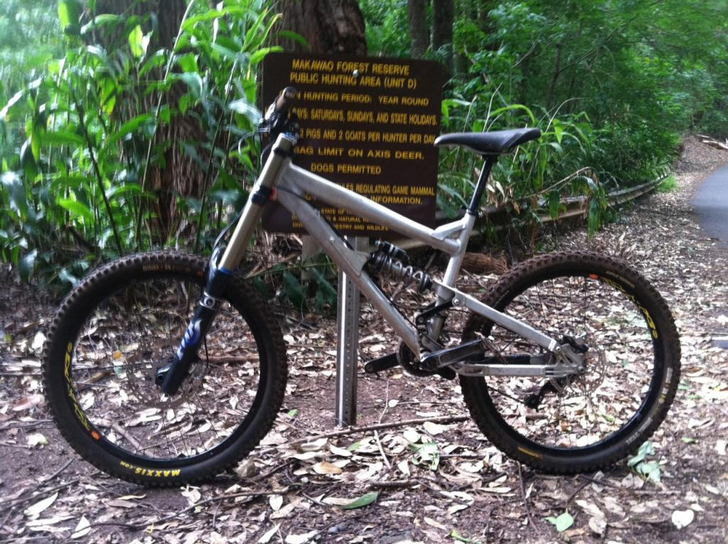 What Does your DH Bike Weight? Post' em Up ! !-photo1.jpg
