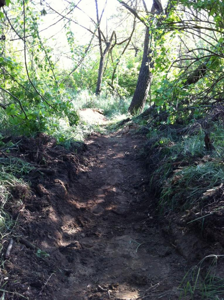 My Backyard Trail & Dealing with Soft Soil-photo8.jpg