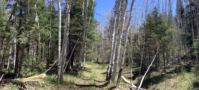 The NM Trail Pix Thread-photod.jpeg
