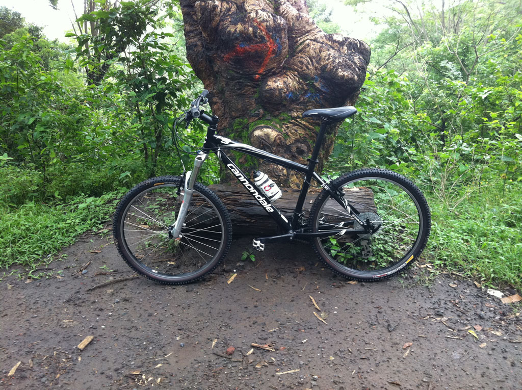 Your Entry Level MTB (Pics and Upgrades)-pic-1.jpg