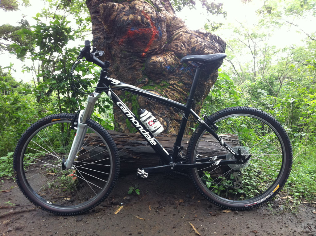 Your Entry Level MTB (Pics and Upgrades)-pic-2.jpg