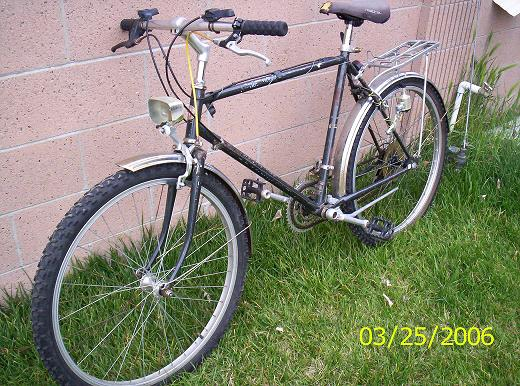 fat granny bicycle can come