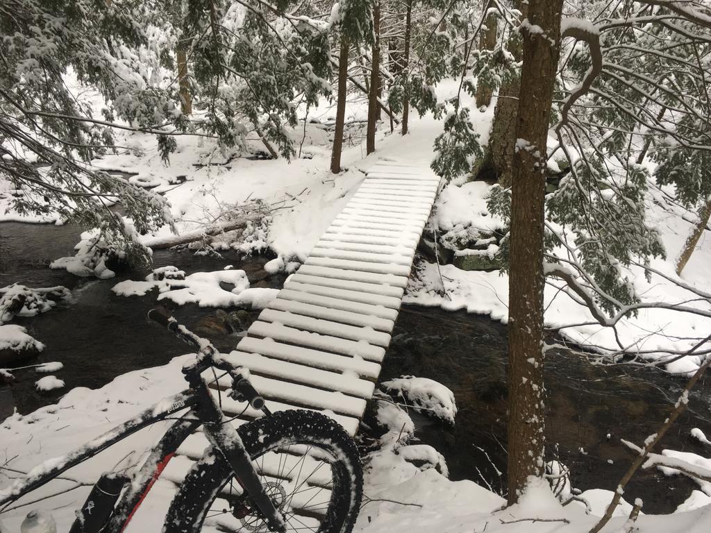 bike +  bridge pics-pic1.jpg