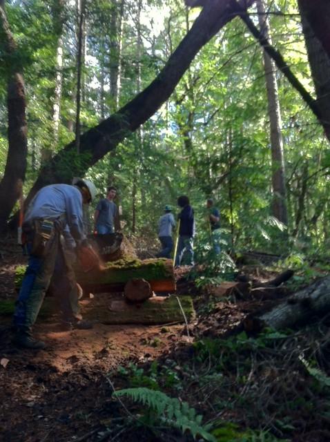 Demo Forest Trailwork Schedule-pic4d.jpg