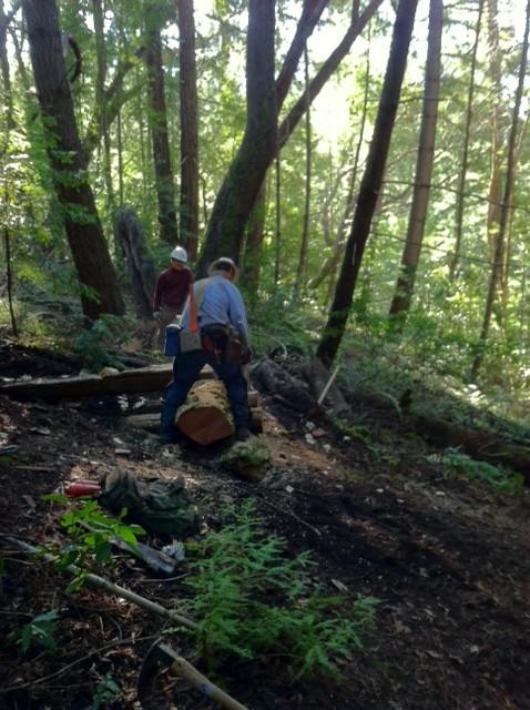 Demo Forest Trailwork Schedule-pic5d.jpg