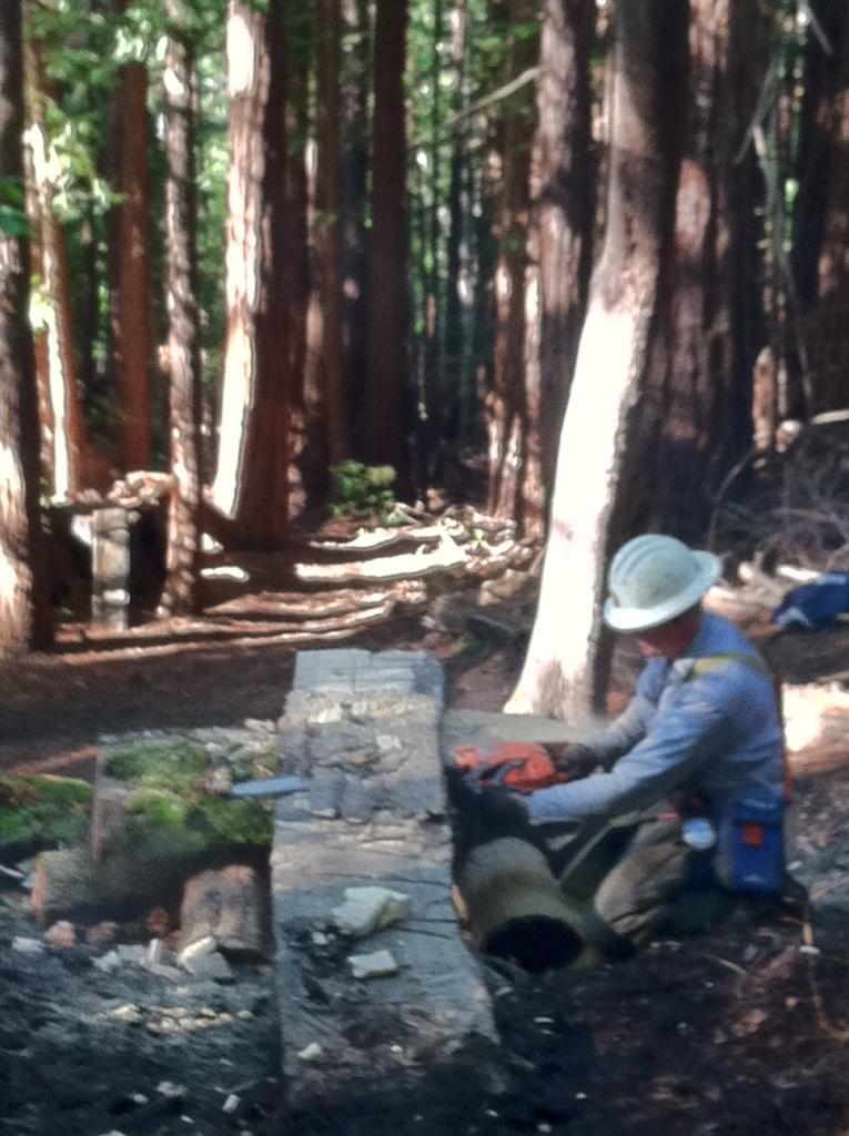 Demo Forest Trailwork Schedule-pic6d.jpg