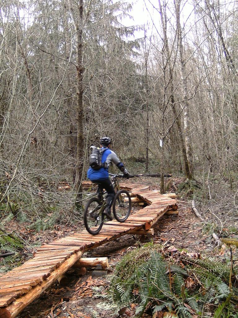 bike +  bridge pics-pict0876.jpg