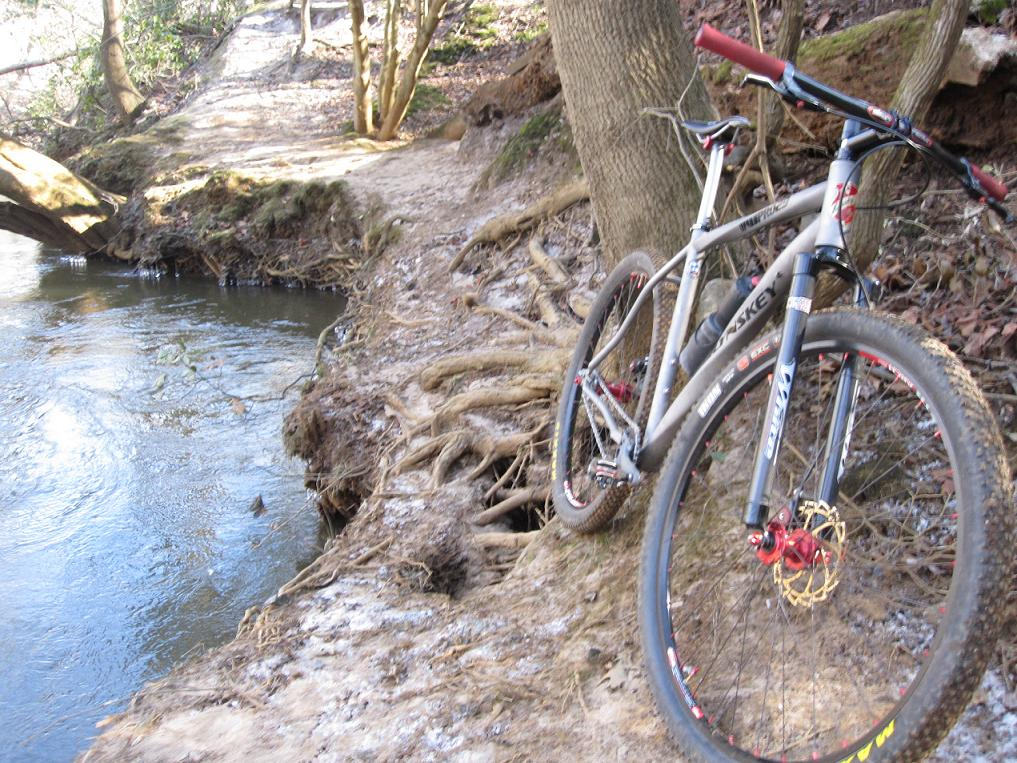 Post pics of your FULLY RIGID SS 29er-picture-008b.jpg