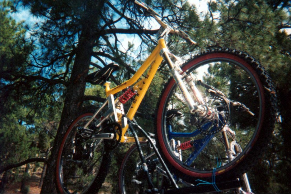 Old School DH bikes-picture-861.jpg