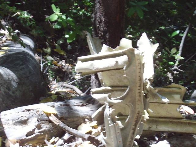 Resolution Trail (Skegg's) Plane Crash Footage-pieces-crash.jpg